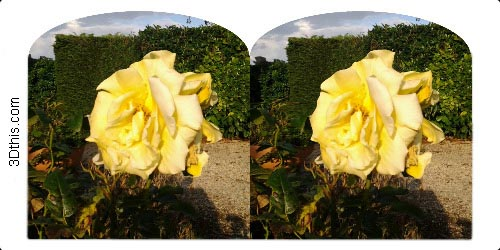 Holmes stereoview example