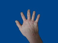 Hand_test by Sell