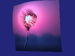 Uber Aless Flower From Google+ by Remodernist