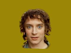 """Lord Of The Rings - Frodo"""