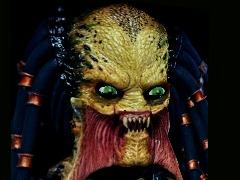 Animation player - Predator