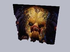 Animation player - Predator 2