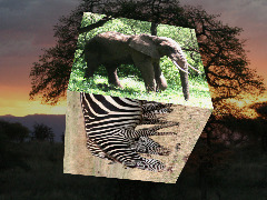 Photo cube online app by 3dthis