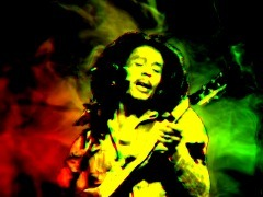 Bob Marley  by Reception