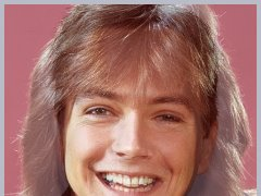 David Cassidy by Goldenone