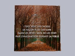 Citation Léonard De Vinci by Dede06