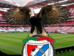 BENFICA by Barbosa